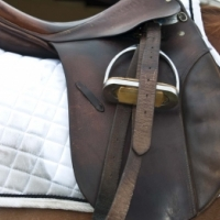 "Stubben Tristan Brown Leather 17"" Showing / Dressage Saddle for Sale 28 Gullet"