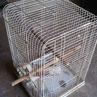 Bird cages - All sizes