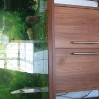 Tropical Fish Aquarium for Sale - All Inclusive