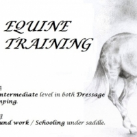 Traveling Horse riding Instructor and rider