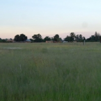 Randfontein 2 Hectare vacant land 20 000 M2