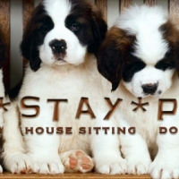 Peace of Mind Pet and House Sitting Service - Gauteng