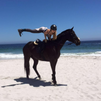 Incredible Thoroughbred mare for sale