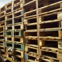 Pallets, wooden and plastic