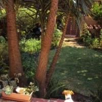 Duplex Garden Unit, Eden Hof Corner Rose &Fountain