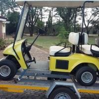 Golf cart double cab