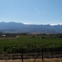 7HA FARM FOR SALE IN PAARL NORTH