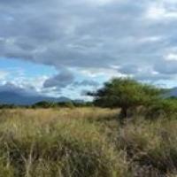 Hoespruit wild reserve