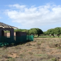 884 sq.meters COUNTRY ESTATE Vacant Stand
