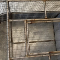Large outdoor birdcage for sale