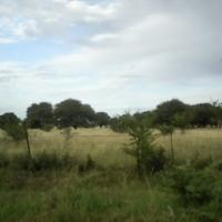 104.16 Ha farm for sale