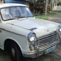 Datsun Bakkie 1965