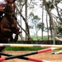 Maties Equestrian Club