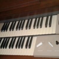 Laney Organ for sale