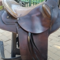 Saddle endurance liversage