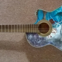 Electro Acoustic Guitar (Reduced Price)