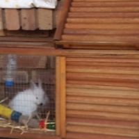 Rabbit Cage For Sale - Good Condition
