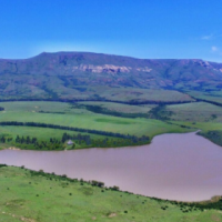 Fantastic 948ha Cattle Farm at the foot of Platberg