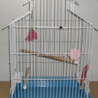 COCKATIEL CAGE FOR SALE