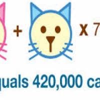 Spay/neuter your pet at a affordable price!