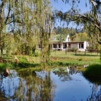 1HA FARM FOR SALE IN PAARL