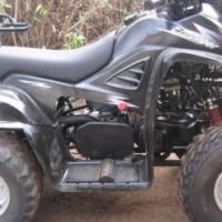 Dinli 110cc Quad Bike - R4,900
