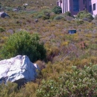 1,338M VACANT LAND FOR SALE IN BETTYS BAY