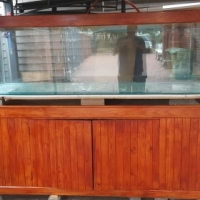 2.1m fish tank for sale