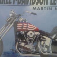 Harley Davidson Legend: original picture