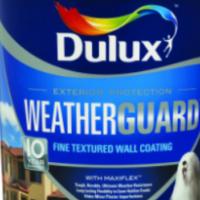Weather Guard Paint