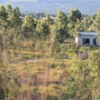 2.5 hectares with very strong borehole and house 18km West of Pretoria
