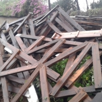 FREE removal of timber
