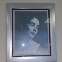 Silver framed pictures. 59 x 71, used for sale  Benoni