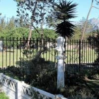 Pinelands Cape Town: to let spacious fresh open-plan house 3 bedrooms front back gardens plunge pool