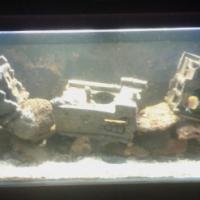 MARINE FISHTANK FOR SALE