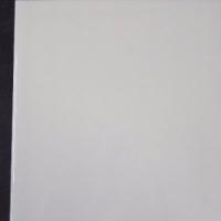 White Gloss Wall Tile - R39,90 per m ²