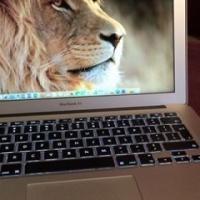 "2015 MacBook Air 13"" 128GB Laptop"