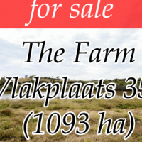 The Farm Vlakplaats 353 - Measuring: 1093.6157 ha