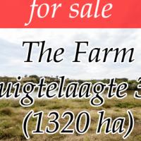 The Farm Ruigtelaagte 353 - Measuring: 1320.7082 ha