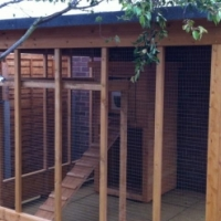 Cattery for sale
