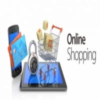 Partner needed for Online Shop