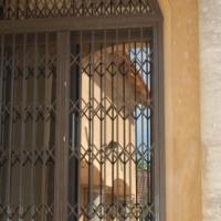 Trellis doors and windows - retractable security barriers