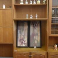 Display Wall Unit Set