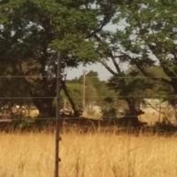 Vacant 1ha plots for sale in spioenkop, Kameeldrift East area