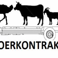 Vervoer bees, skaap Transport Cattle