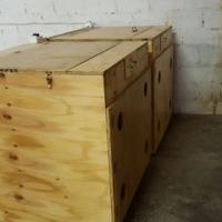 Chicken Hatchery, Incubators( Setters) and Hatchers