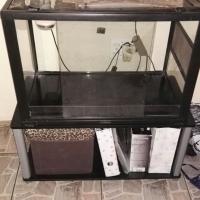 Glass reptile cage