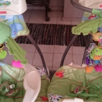 TWINS FISHER PRICE RAINFOREST SWINGS