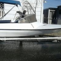 7 seater Evinrude 3.25 V6 Speed boat for sale