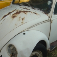 VW Beetles to swop for bike or 4x4 why